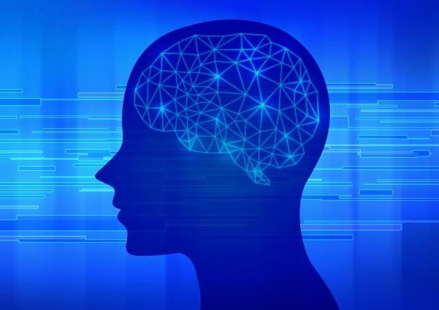 脳のイメージ図