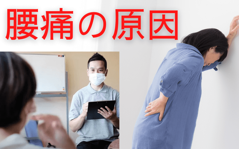 腰痛の原因 イメージ図